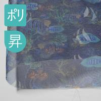オーガンジー(プリント巾147cm)